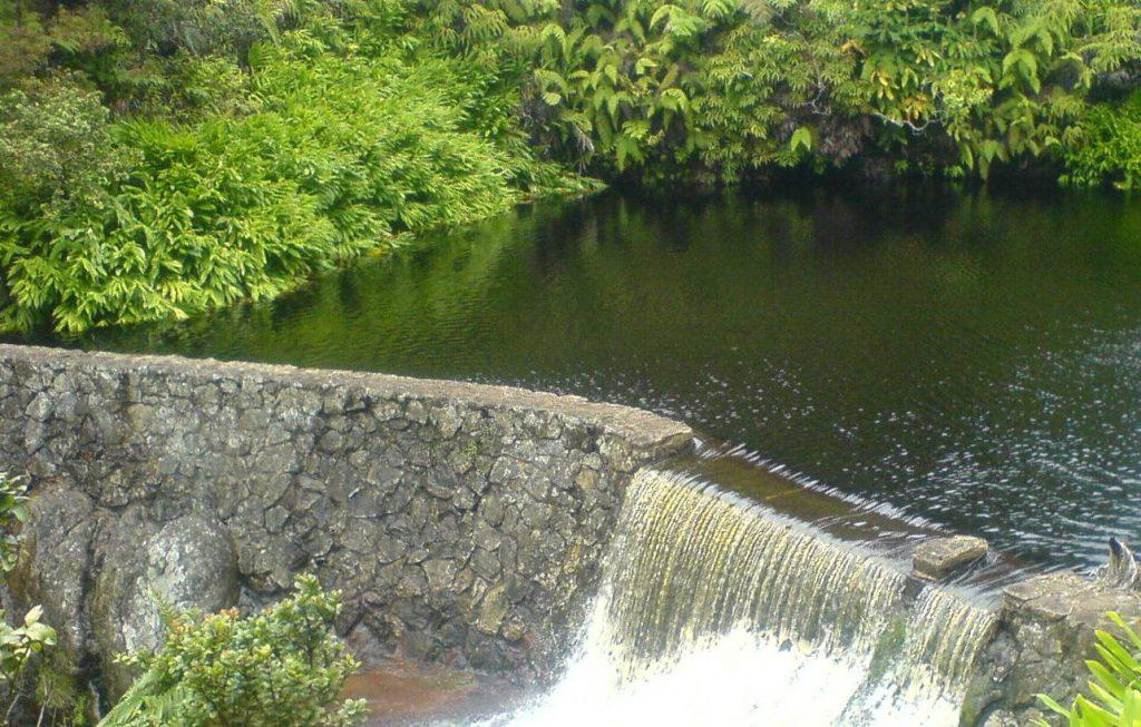 Kohakohau dam intake