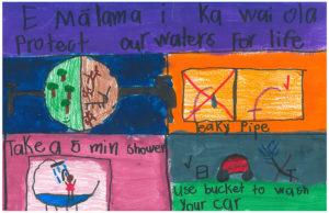 ʻĀkōlea Case - Kanu o ka ʻĀina NCPCS